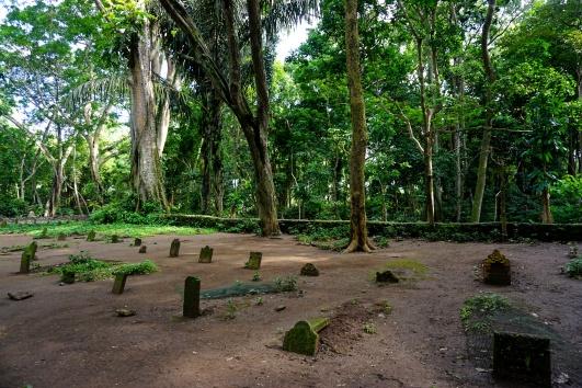 Monkey graveyard