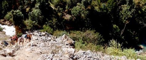 ...last but not least: an adventurous climb up the rocks